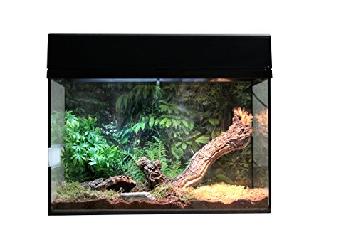 Lucky Reptile Starter Kit 50 cm