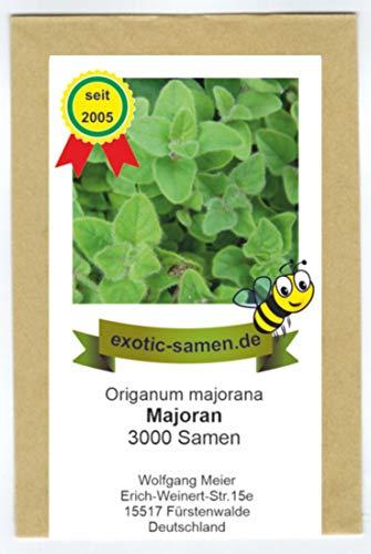 Majoran - Bienenweide - Origanum majorana - 3000 Samen