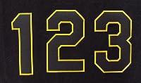 【プロ野球 阪神タイガースグッズ】背番号ワッペン(現行版・黒地黄縁)種類:6