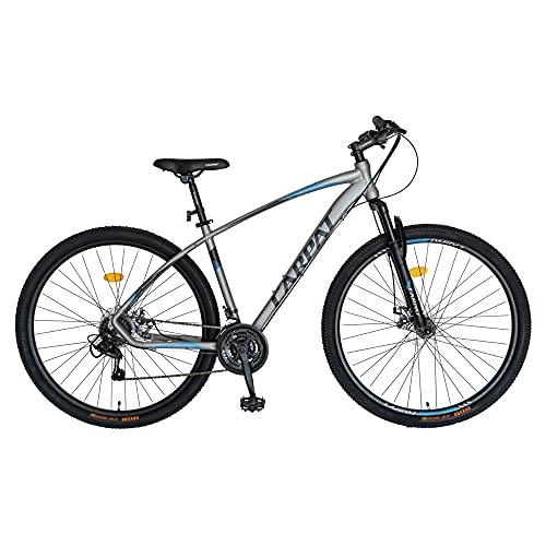 Bicicletta da uomo da 29 pollici, mountain bike, Shimano Tourney TY-300, 21 marce, telaio in alluminio, freno a disco meccanico (29 pollici, grigio argento e nero)