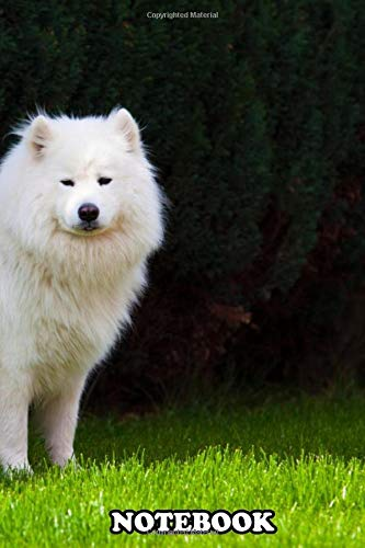 Notebook: Samoyed Dog , Journal for Writing, College Ruled Size 6' x 9', 110 Pages