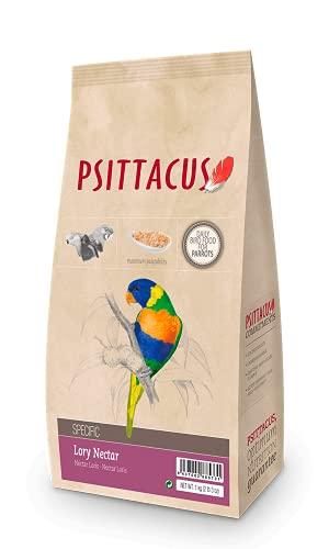 Psittacus - Psittacus - Loris Nettare