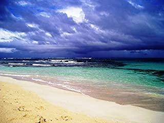 Peel-n-Stick Poster of Puerto Rico Sea Beach Flamenco Water Sand Vivid Imagery Poster 24 x 16 Adhesive Sticker Poster Print