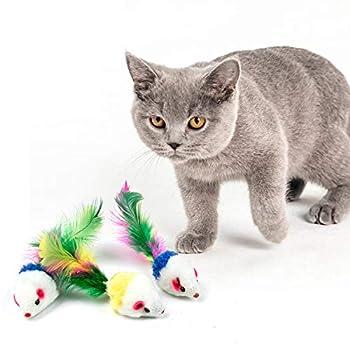 WolinTek 10 Pack coloré drôle Souris Petite Souris Queue Chat Pet Jouet,coloré Plume Souris pour Chat