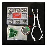 XIAOFANG 100pcs Matrix Dental Kit Matrices parciales...