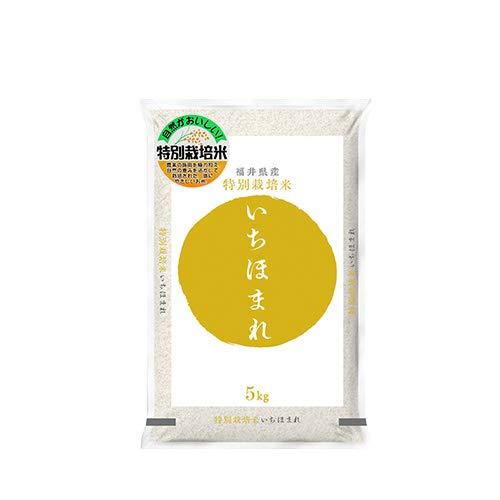 福井県 特別栽培米 いちほまれ 白米5kg 令和3年産
