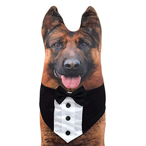 Pets Dog Cat Formal Neck Tie and Collar Handcrafted Adjustable Formal Pet Bowtie Collar Neck Tie for Dogs Cats (XL)