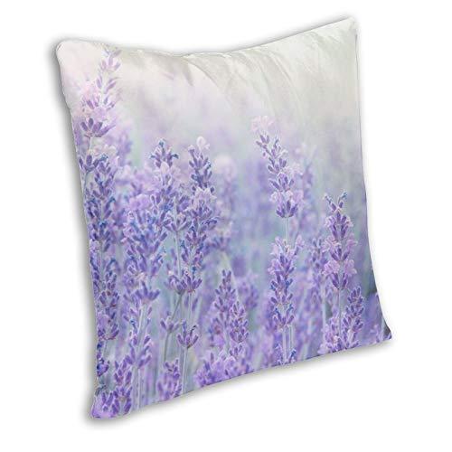 Zanghyu Fundas de cojín con diseño de flores de lavanda con luz solar en un suave foco, funda decorativa para el sofá o la habitación, tamaño 12 x 12 pulgadas