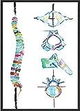 ZCGY Póster médico de Arte de Pared de anatomía con impresión de Columna de Acuarela para Regalo de quiropráctico Imagen Decorativa de habitación de fisioterapeuta 60x80cm sin Marco