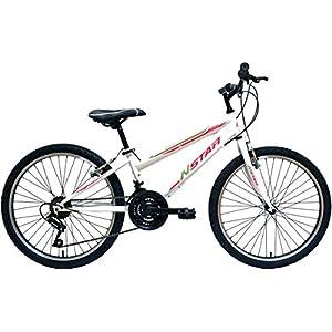 Discovery DP067 - Bicicleta de montaña mountainbike B.T.T. 24 ...