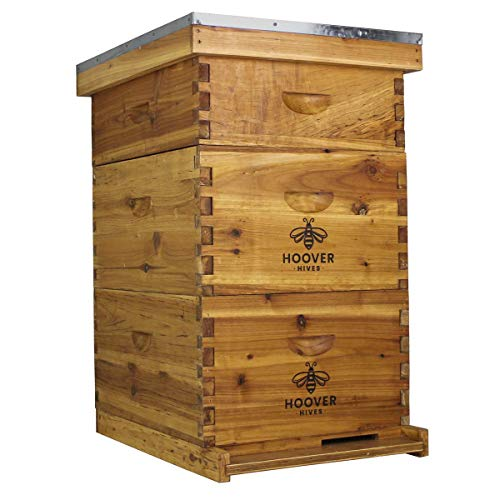 Hoover Hives 10 Frame Langstroth Beehive Dipped in 100% Beeswax Includes Wooden Frames & Waxed Foundations (2 Deep Boxes, 1 Medium Box)