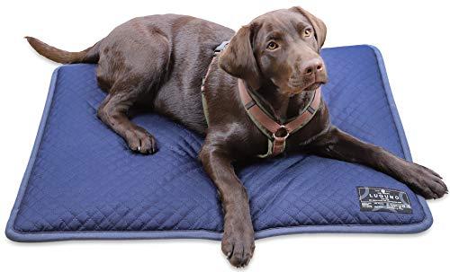 LUGUNO® Hundekissen 80 x 60 cm Blau Waschbar Wasserdicht, für mittelgrosse Hunde, Outdoor & Zuhause Robust Wendekissen Weich & Bequem
