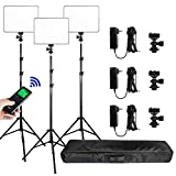(3 Packs) VILTROX vl-200 Light 30W Bi-Color 3300K-5600K Studio Lights Kit with Stand,CRI 95+ Wide Angel LED Photography Lighting for Video Shooting