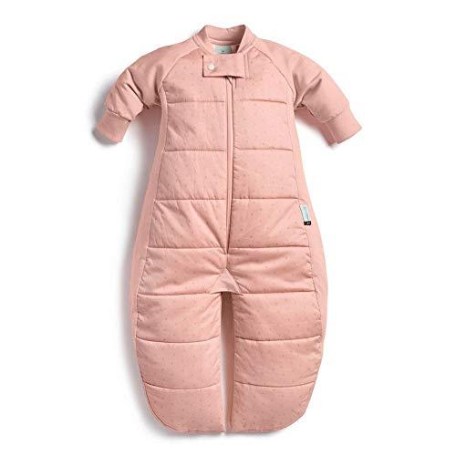 ErgoPouch Sleep Suit Bag 2.5 Tog - Berries - 8-24 Months