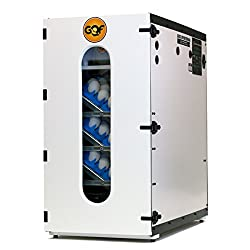 10 Best Eggs Incubator 2019 - Reviews and Buying Guide
