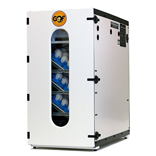 Best commercial incubator Digital Sportsman Cabinet Incubator 1502 review