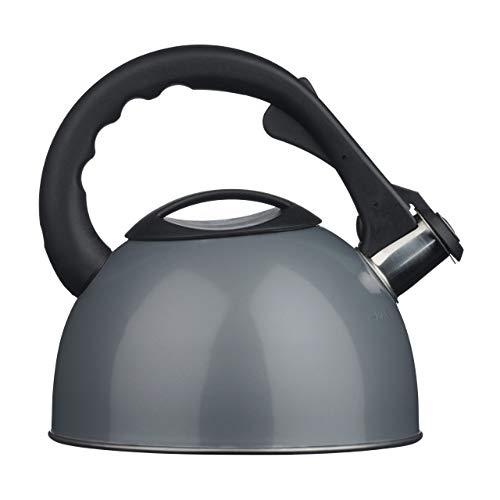 Premier Housewares Tetera-Hervidor con Silbato, Acero Inoxidable, Plata, Centimeters