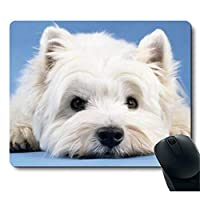 かわいい犬の子犬が地面に横たわってゆったりと快適滑り止めマウスパッド