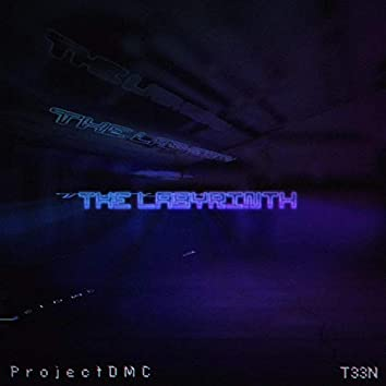 The Labyrinth (feat. T33N)
