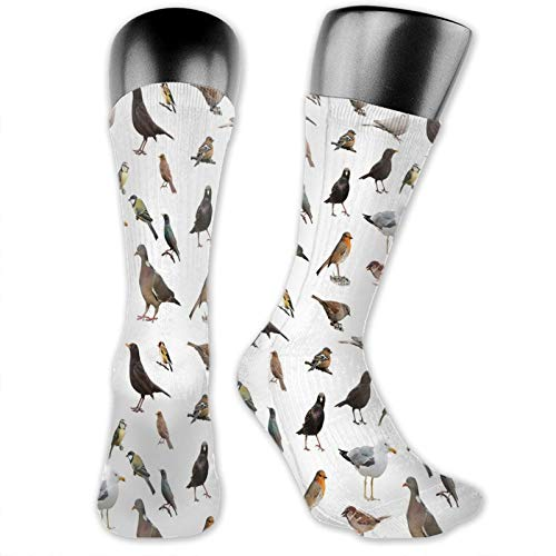 DHNKW Socks Compression Medium Calf Crew Sock,Collection Of British Garden Birds Pigeon Robin Dove Chaffinch Sparrow And Dunnock