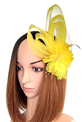Coolwife Women's Fascinator Hat Hair Clip Feather Wedding Headware Bridal 1920s Headpiece