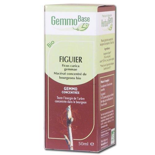 Figuier Bio - 50 ml - Herbalgem