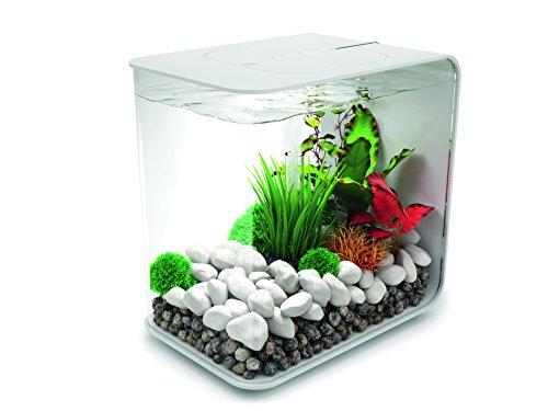 OASE biOrb FLOW 15 LED Aquarium, 15 Liter - Aquarien Komplett-Set mit LED Beleuchtung und patentiertem Filter-System, Acryl-Becken in Weiß