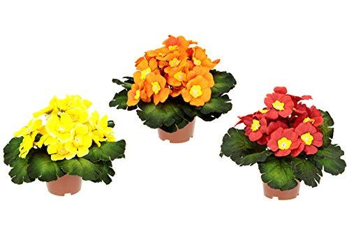Künstlicher Primelbusch mit Blätter im Topf Primeln Pflanze Kunstblume Seidenblume Topfpflanze Zimmerpflanze Blume Primula Schlüsselblumen Kunstpflanzen Frühlingsblüher Frühling Frühjahr Deko