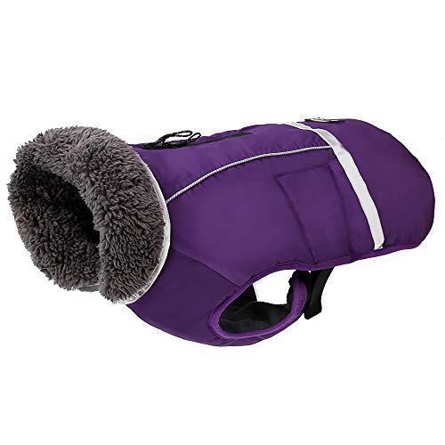 PENIVO Kaltes Wetter Reflektierende Mäntel einstellbar Hund Kleidung Winter wasserdicht im Freien Hund Jacke verdicken warme Hundemantel für Kleine mittelgroße Hundepullover (M, Lila)