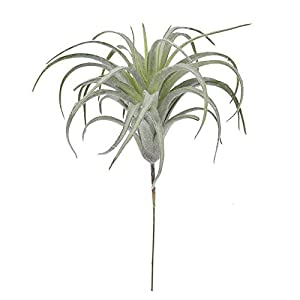 C.W.USJ Artificial Plants Tillandsia Plants Artificial Flocking Fake Bromeliads Air Plants Hanging Simulation Plant for Home Decoration Artificial Flower