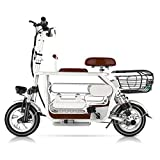 WM-Z 3-Wheel Electric Scooter 250w High-Power Electric Scooter Lightweight Folding Rechargeable Ultra-Light Electric Bicycle with Display,White
