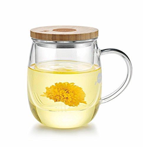 Friedos Tee Glas mit Sieb und Deckel 500 ml für Losen Tee oder Beutel - Tasse aus Borosilikat Glas mit Filter bis 130°C