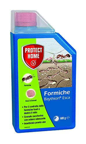 Protect Home 435833 Baythion Esca Formiche, 600 gr