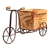 WEIJIAMY Vase Holz Dreirad Modell Blumentopf Schmiedeeisen Fahrrad Flower Ständer Indoor Lager Rack Home Garten Desktop Dekor Handwerk Geschenke Elegante Dekoration (Color : As Shown)