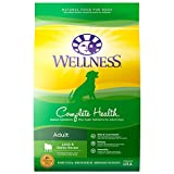 Wellness Complete Health Lamb & Barley