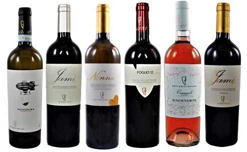 Probierpaket 2 von Fattoria Teatina vom Geheimtipp aus den Abruzzen zum Vorzugspreis (6x0,75l), 6 typische Weine aus den Abruzzen zum Kennenlernen