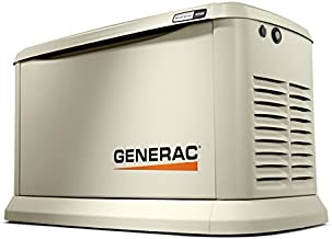 Best powerstroke 5000 watt generator price Reviews