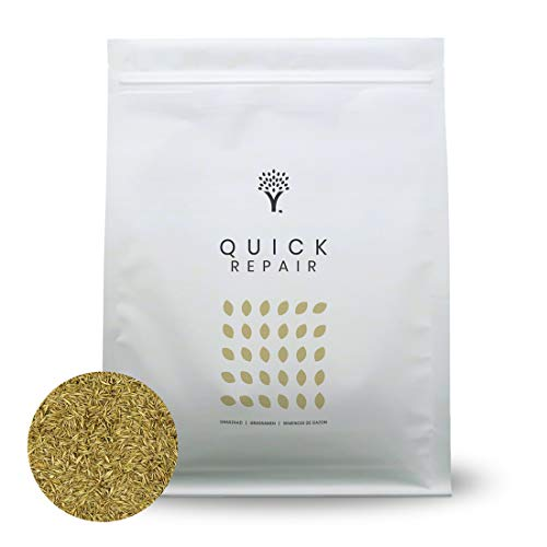 MOOWY Quick Repair Grass Seed | Lawn Patch Repair, Lawn Repair, Lawn Seed, Grass Seeds Fast Growing, Lawn Seeds Fast Growing, Grass Patch Repair, Fast Growing Lawn Seed, Fast Grass Seed | 250m²