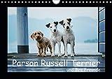 Parson Russell Terrier (Wandkalender 2020 DIN A4 quer)