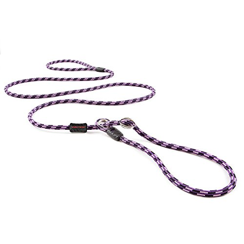 EzyDog Luca All-in-One Slip Collar Climbing Rope Dog Leash Combo - Best Dog Lead for Control, Training, Correction, and Exercising - Perfect for Small Dogs (Lite, Purple)