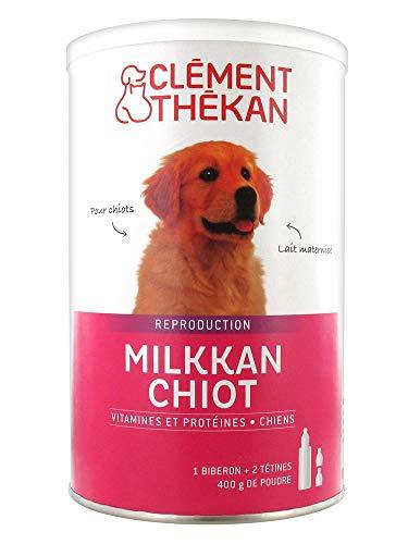 Clément Thékan Milkkan Chiot