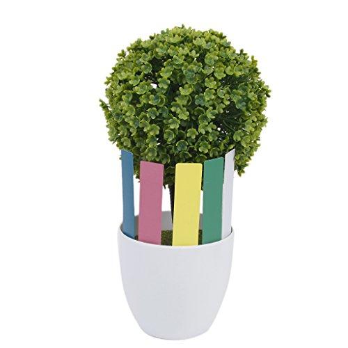 Sharplace Lot de 100 Pcs Marqueurs Etiquettes Plante de Pépinière Arbustes Semis Bouture Carte Tag Jardin Kit 10 * 2cm