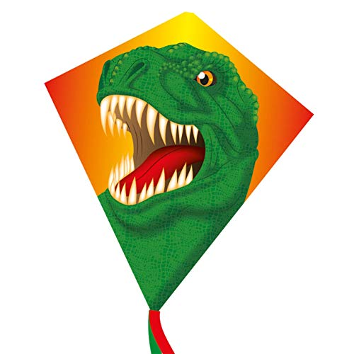 CIM Kinder-Drachen - Dream Eddy T-Rex - Einleiner für Kinder ab 3 Jahren - Abmessung: 65x72cm - inkl. 80m Drachenschnur und Streifenschwänze