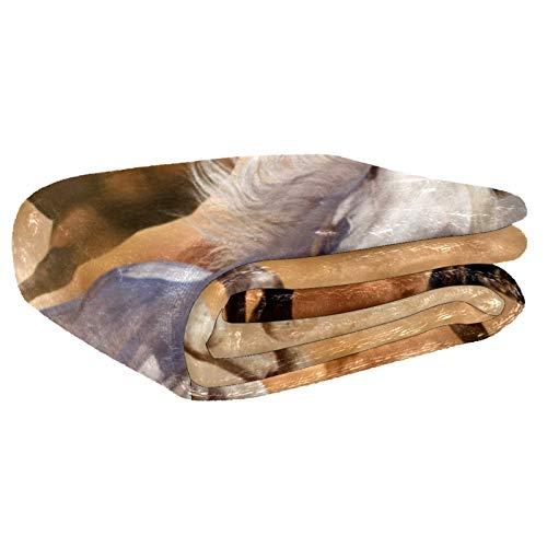 AIBILI Manta de tamaño – para todas las estaciones, ligera y afelpada hipoalergénica – mantas de microfibra para cama, sofá o viaje (152 x 203 cm)