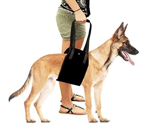 Dog Harness, AntEuro Supporto Sling Aiuta i Cani con le Gambe Deboli Stand Up, Camminare, Salire le Scale, Beneficiando in Auto (Nero)