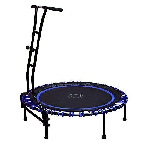 TE-Sports Indoor Outdoor Fitness Mini Trampolin 110 cm Ø 6 Standbeine Haltestange höhenverstellbar 120 kg belastbar blau