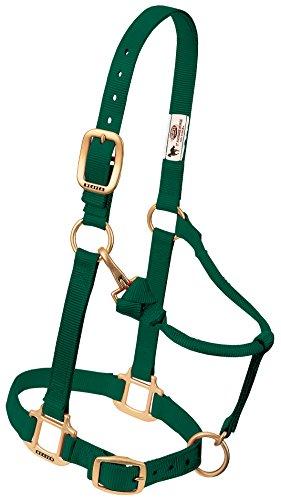 Weaver Leather Original verstellbares Nylonhalfter für Pferde, Weanling/Pony, Hunter Green