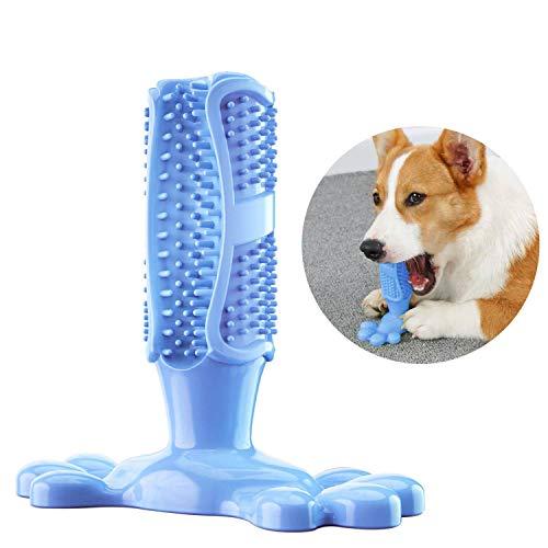 PETTOM Cepillo de Dientes para Perros Juguete para Masticar Masticable para Perros M-Size Caucho Natural Cuidado Dental para Perros Limpieza de Dientes de Perro (Fit: 10-40pounds Azul)
