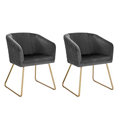 WOLTU 2X Esszimmerstühle 2er Set Küchenstuhl Polsterstuhl Wohnzimmerstuhl Sessel mit Armlehne, Sitzfläche aus Samt, Metall Beine, Dunkelgrau BH271dgr-2