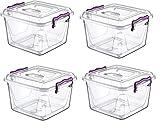 Caja de plástico fuerte para despensa, 4 x 6 litros, caja de almacenamiento transparente con clip de grado alimentario, plástico libre de BPA